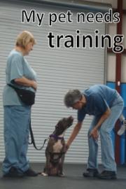 PASS-training